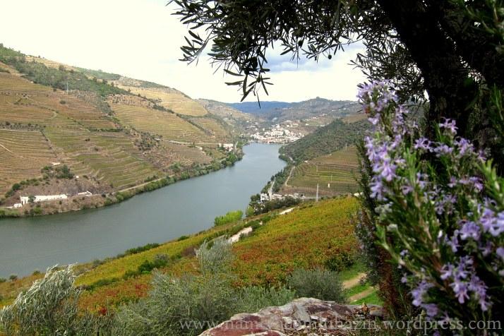 Região do Douro próxima a Pinhão