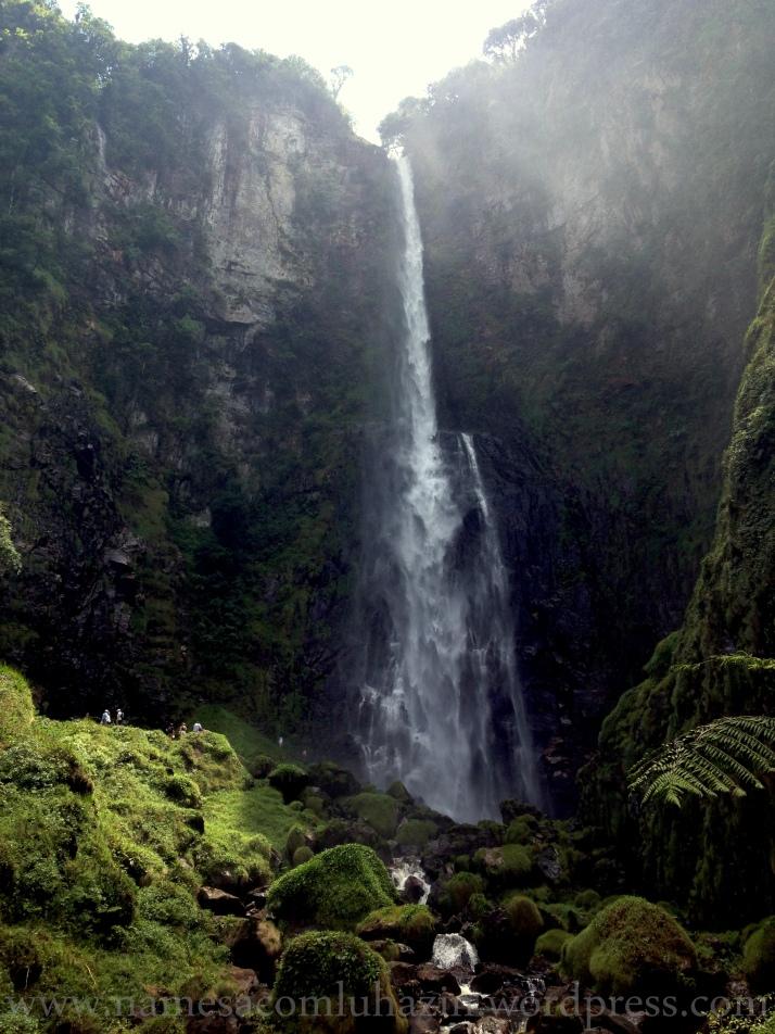 """14ª cachoeira da """"Rota das Cachoeiras"""" em Corupá- SC"""