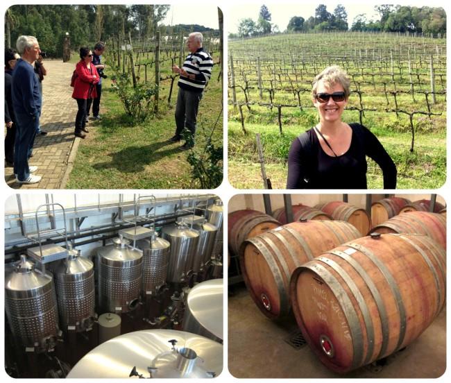 O Ravanello nos apresenta seus vinhedos, tanques de inox para fermentação e barricas de carvalho onde repousam os vinhos